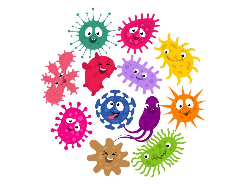 L'attribut alt de cette image est vide, son nom de fichier est coronavirus_explique_enfant.png.